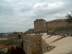 El Castillo y la Muralla de Zamora